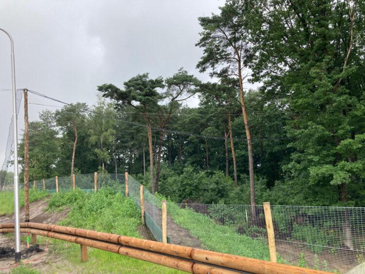 Eekhoornbrug