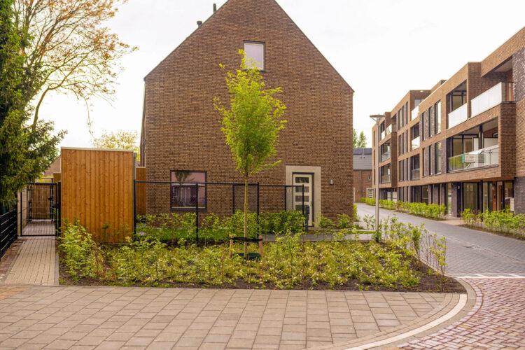 aanplanting wijk Eindhoven