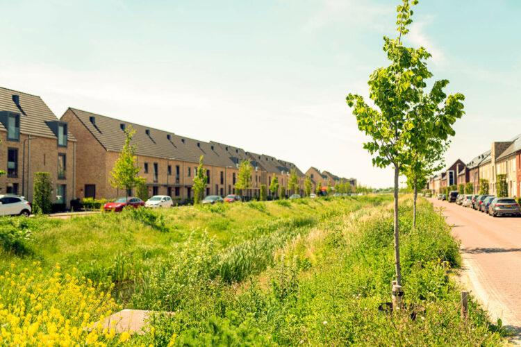 groenstrook nieuwbouwwijk